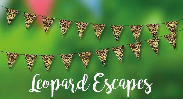 Leopard Escapes Bunting