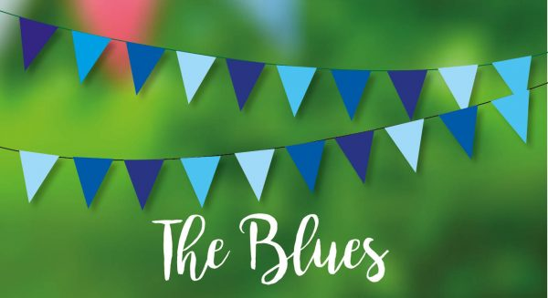 The Blues Bunting