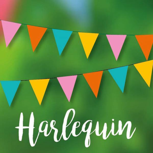 Harlequin Bunting